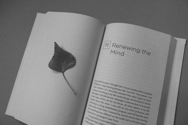 Como Descubrir Tu Pasion Reinvencion Profesional Emprendimiento Y Productividad